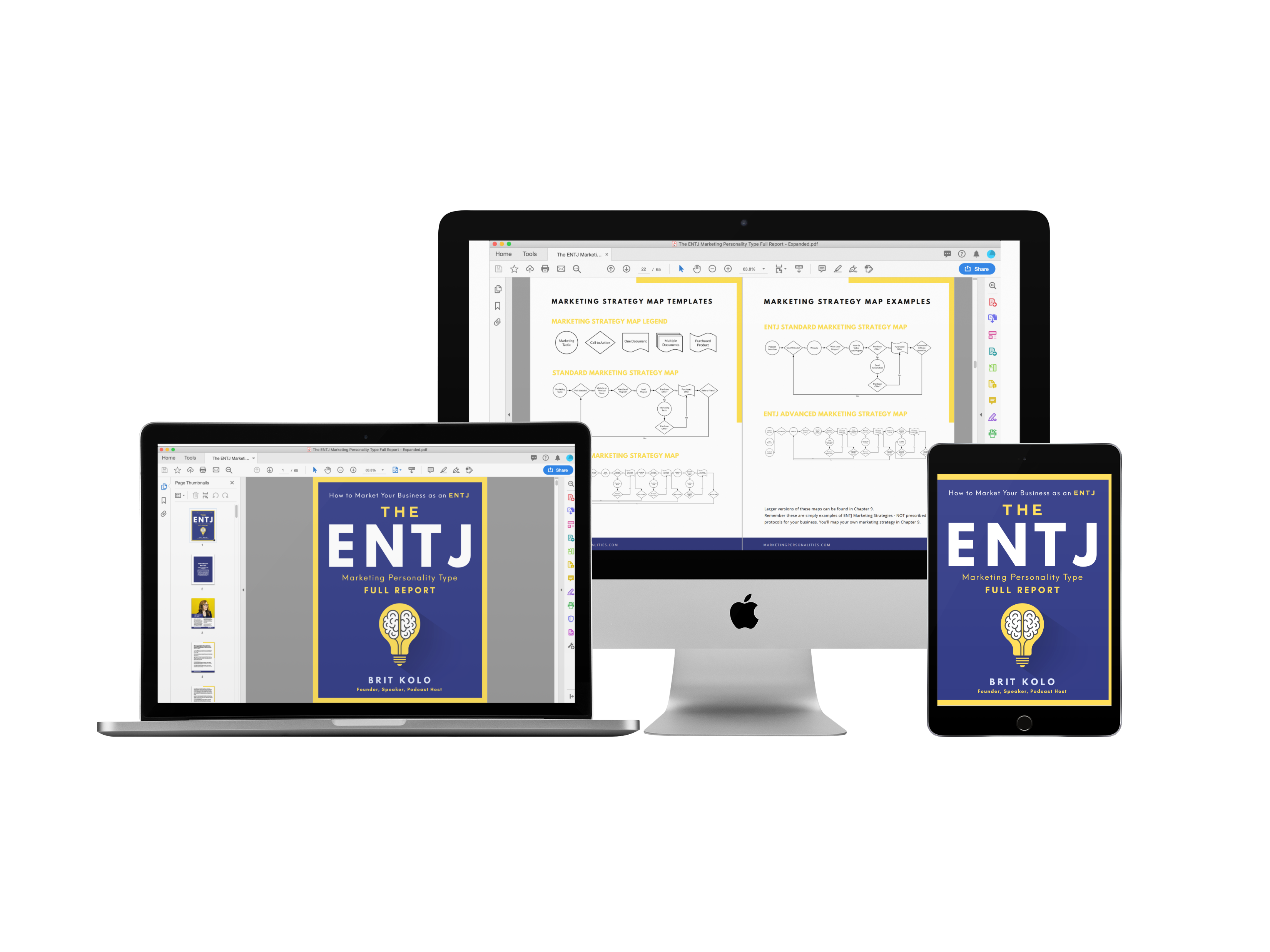 ENTJ Marketing Personality Type Full Report Product
